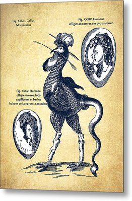 Physica Curiosa 1662 - Page 714 - Vintage Metal Print by Aged Pixel