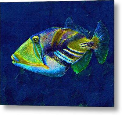 Picasso Triggerfish Metal Print by Jane Schnetlage