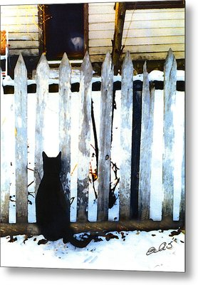 Picket Fence Love Metal Print by Elia Peters