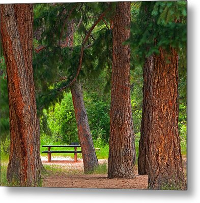 Metal Print featuring the photograph Picnic Time  by Eric Rundle