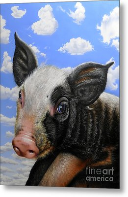 Pig In The Sky Metal Print by Jurek Zamoyski