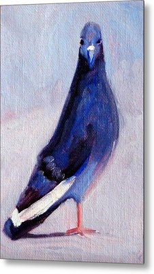 Pigeon Bird Portrait Painting Metal Print