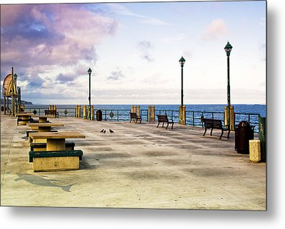 Pigeon Meeting At Redondo Pier Metal Print by Joseph Hollingsworth