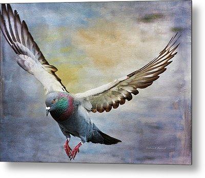 Pigeon On Wing Metal Print by Deborah Benoit