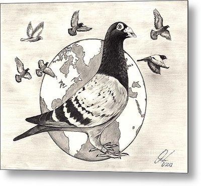 Pigeon Race Metal Print