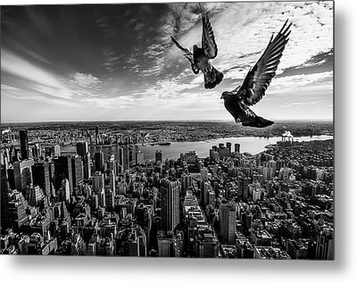 Pigeons On The Empire State Building Metal Print