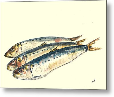 Pilchards Metal Print by Juan  Bosco