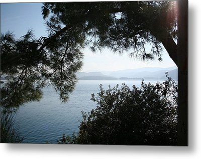 Metal Print featuring the photograph Pine Trees Overhanging The Aegean Sea by Tracey Harrington-Simpson