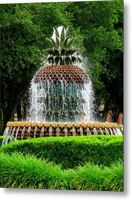 Pineapple Fountain 2 Metal Print by Randall Weidner