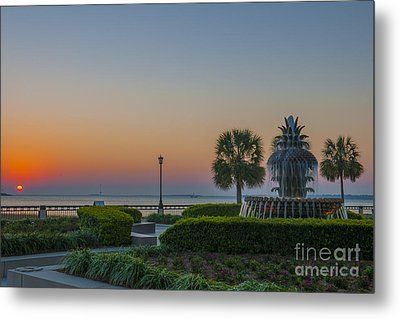 Metal Print featuring the photograph Dawns Light by Dale Powell