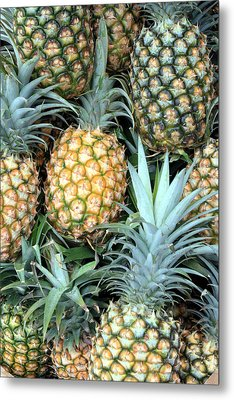Pineapple Paradise Metal Print by Karen Nicholson