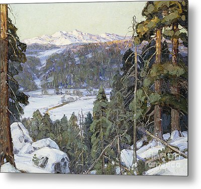 Pines In Winter Metal Print by George Gardner Symons
