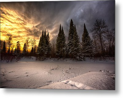Pinewood River Metal Print