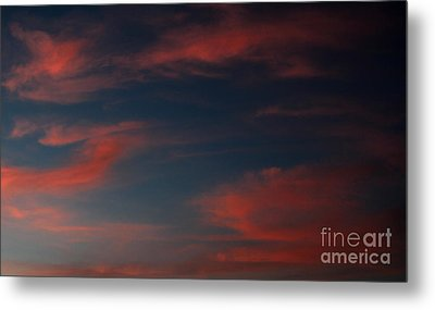 Pink And Blue Skys Metal Print by Amanda Collins