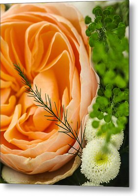 Metal Print featuring the photograph Pink And Green by Ross Henton