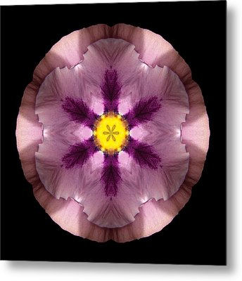 Metal Print featuring the photograph Pink And Purple Pansy Flower Mandala by David J Bookbinder