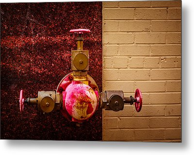 Pink And Rusted Metal Print