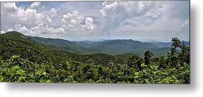 Metal Print featuring the photograph Pink Bed On Blue Ridge Parkway by Allen Carroll