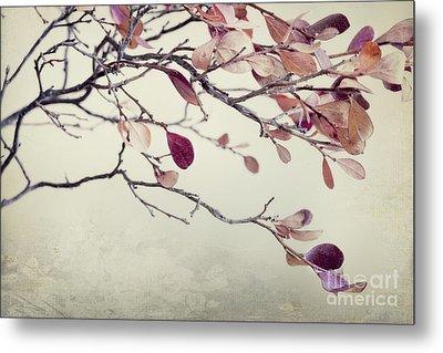 Pink Blueberry Leaves Metal Print by Priska Wettstein