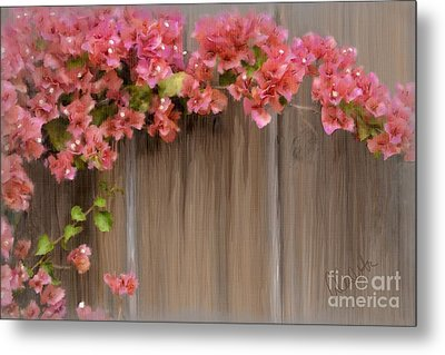 Pink Bougainvillea Metal Print by Andrea Auletta
