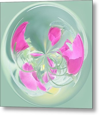 Pink California Poppy Orb Metal Print by Kim Hojnacki