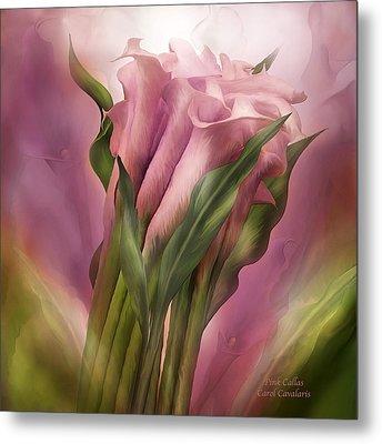 Pink Callas Metal Print