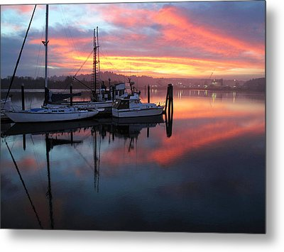 Metal Print featuring the photograph Pink Charisma by Suzy Piatt