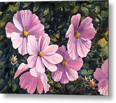 Pink Cosmos Metal Print by Anthony Forster