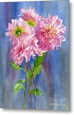 Pink Dahlias With Blue Gray Background Metal Print by Sharon Freeman