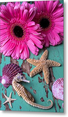 Pink Daises And Seahorse Metal Print by Garry Gay