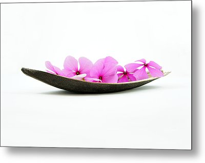 Pink Flower Boat Metal Print by Aged Pixel