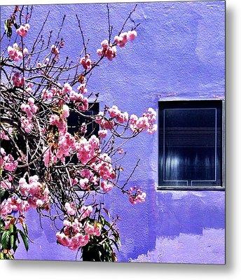 Pink Flowers Metal Print by Julie Gebhardt