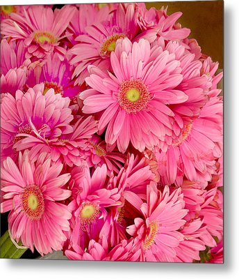 Pink Gerbera Daisies Metal Print by Art Block Collections