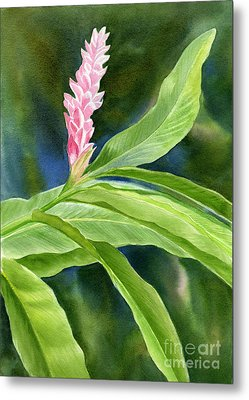 Pink Ginger Flower Metal Print by Sharon Freeman