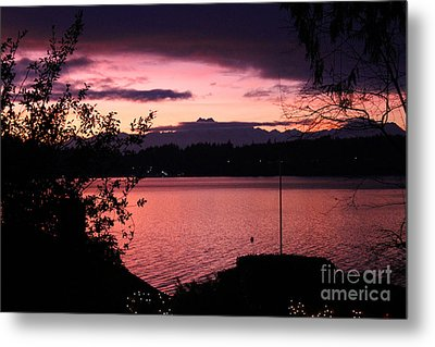 Pink Grapefruit Colored Sunset Metal Print by Kym Backland
