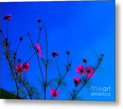 Pink Green And Blue Metal Print by Tina M Wenger