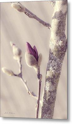 Pink Magnolia Bud  Metal Print by Julie Palencia
