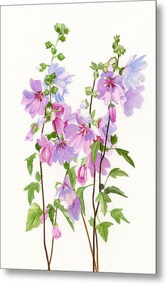 Pink Mallow Flowers Metal Print by Sharon Freeman