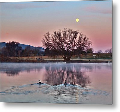 Metal Print featuring the photograph Pink Morning by Lynn Hopwood
