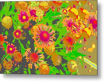Metal Print featuring the photograph Pink Orange Flowers by Suzanne Powers