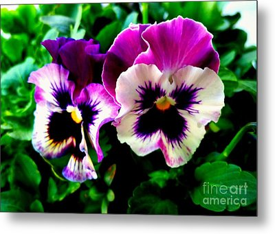 Violet Pansies Metal Print by Rose Wang