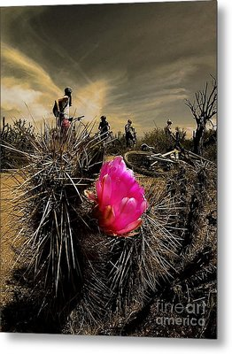 Pink Passion Metal Print by Scott Allison