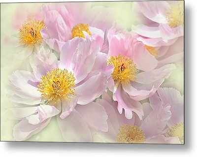 Pink Peony Flowers Parade Metal Print by Jennie Marie Schell
