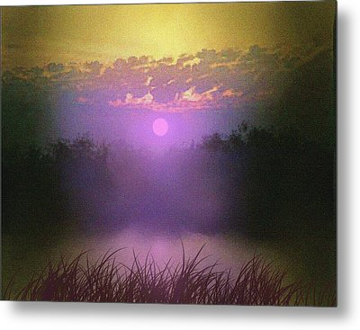 Pink Pond Morning Metal Print by Robert Foster