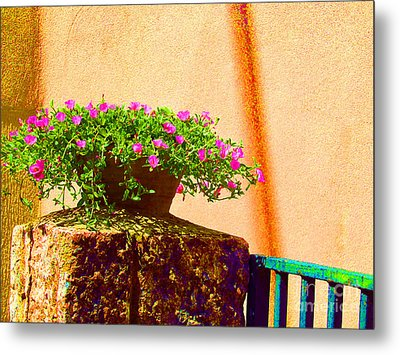 Pink Potted Flowers And Bench Metal Print by Tina M Wenger