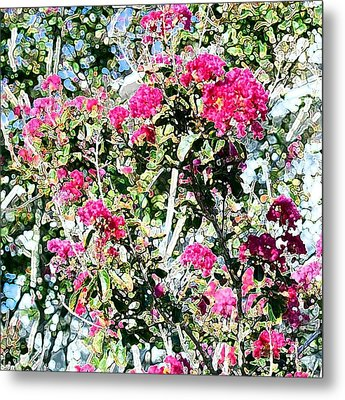 Pink Profusion Metal Print by Ellen O'Reilly