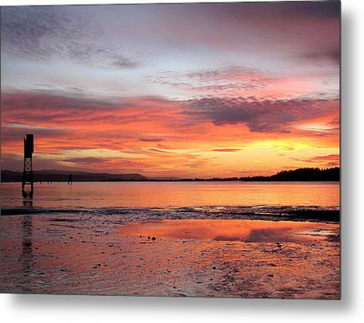 Pink Reflections Metal Print by Suzy Piatt