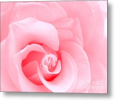 Love Me Tender Metal Print by Patti Whitten