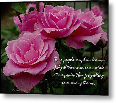 Roses And Thorns Metal Print