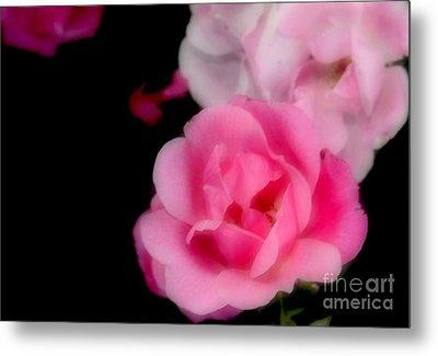 Pink Roses Metal Print by Kathleen Struckle